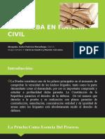 Civil 4