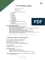 bio_t8_organulos.pdf