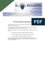 TB_VIII-I_Police_Response_to_Homelessness.pdf