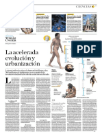 La Acelerada Evolución y Urbanización
