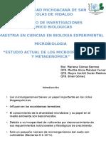 Expo Microbiología- Estudio Actual de Los Mo y Metagenómica