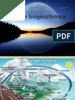 Circuite biogeochimie