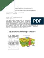 BFPA_U1_A3_GICS.docx