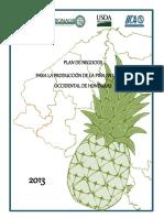 PLAN-DE-NEGOCIOS-PARA-LA-PRODUCCION-Y-COMERCIALIZACION-DE-PINA-EN-EL-OCCIDENTE-DE-HONDURAS.pdf