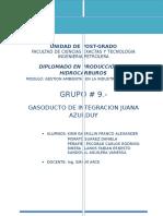Gasoducto de Integracion Juana Azurduy (Gija) - Informe
