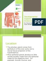 4th Block Endocrine Powerpoint