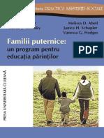 Familii Puternice - Un Program Pentru Educaţia Adulţilor