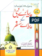 Journeys of Holy Prophet PBUH