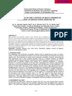 DElta Ferite.pdf