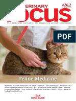Feline Medicine 1