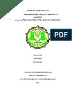 LP CA Ovarium Revisi 2