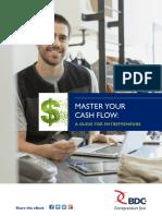 BDC - cash_flow_guide.pdf
