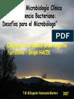 Grupo Hacek.pdf