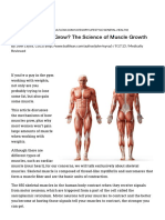 How Do Muscles Grow_ the Science of Muscle Growth