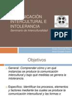 Comunicación intercultural e intolerancia