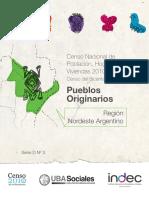 Censo Pueblos Originarios NEA