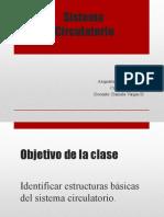 Sistema Circulatorio 5° básico