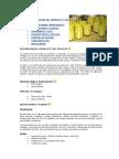 FABRICACIÓN DE PIÑA EN ALMIBAR 04-05-2009 (1).doc