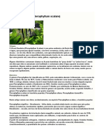 PG2012_Estruturas_2