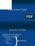 Dna Structure Lecture