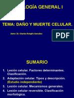 Patologia General Conferencia 3