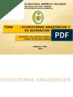 diapositivas-ECOSISTEMAS