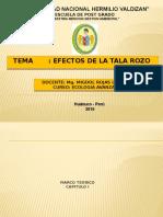diapositivas-SEGUNDA EXPOSICION
