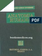 Anatomia Humana 2 Quiroz