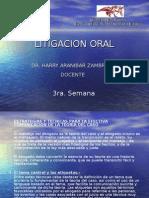 Ayuda Memoria - Litigacion Oral - 4ta Semana-2010[1]