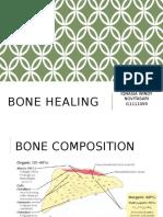 Bone Healingm