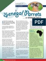 Keeping Senegal Parrtos