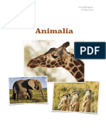 Regnul Animalia - clasa a IX-a Sinteza Biologie vegetala si Animala