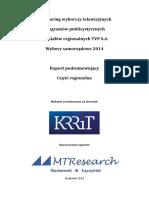 Wybory Samorządowe 2014 - Publicystyczne Regio