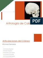 Artrología_de_Cabeza
