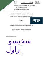 1.1 Conceptos Basicos Para La Gestion de Proyectos-gestion de Proyectos de Software-tema 1