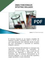 Pruebas Funcionales de Intestino Delgado