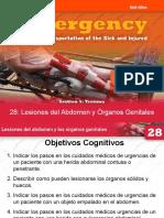 28 Lesiones Del Abdomen y Órganos Genitales