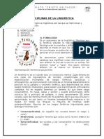 Disciplinas de La Lingüística