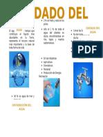 CUIDADO DEL AGUA.docx