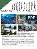 VISION Y MSION DE UNIVERSIDADES.docx
