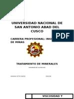 Informe Tratamiento de minerales Flotacion