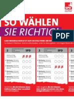 Wahlverfahren Musterstimmzettel