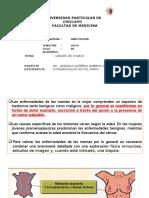 CÀNCER DE MAMA FANNY.pptx