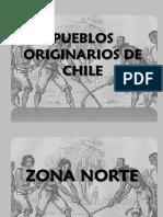 powerpointdelospueblosorginariosdechile-100905171821-phpapp02