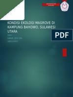 Kondisi Ekologi Magrove Di Kampung Bahowo, Sulawesi