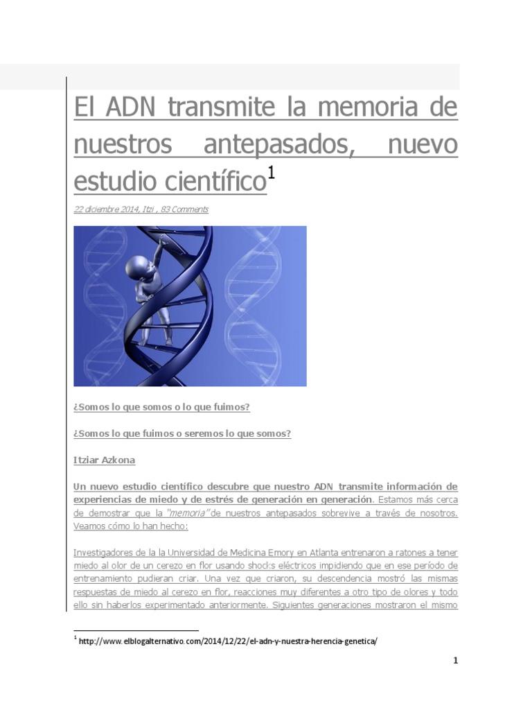 Adn Y Memoria