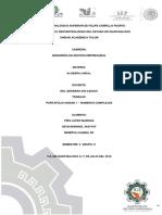carpeta evidencia unidad I algebra lineal.pdf
