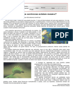texto_plantas insetívoras