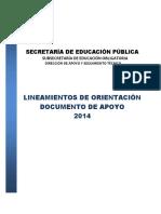LineamientosOrientacion2014
