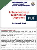 3. Antecedentes y Justificacion